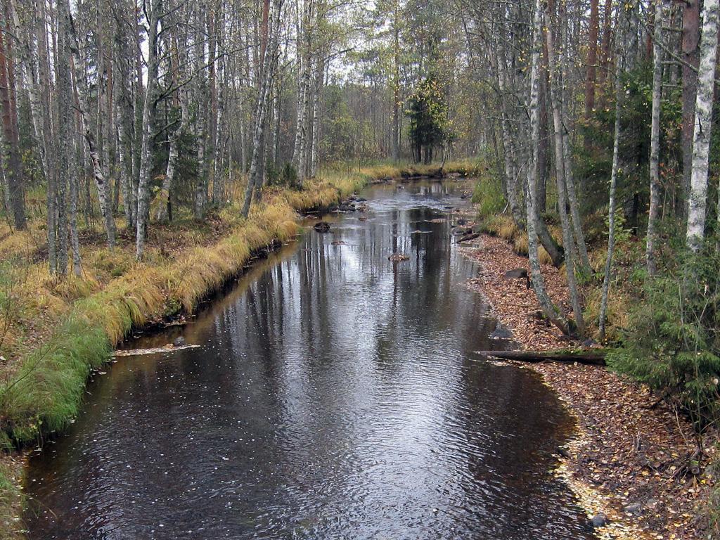 Kolkkujoen jokiuoma